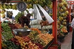 Visita a mercato 8