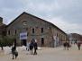 55 Biennale