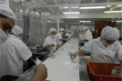 Visita a stabilimento produttivo